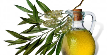 Рекомендации по применению масла чайного дерева для отбеливания зубов